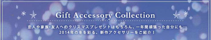 Gift Accessory Collection